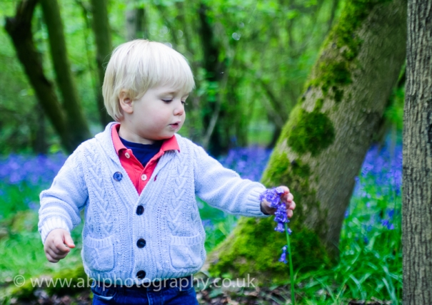 Bluebell photo-shoot by ABL Photography- boy with a blubell